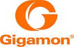 Gigamon Partner, Smart Visibility Platform, Security, Security Delivery Platform, GigaSecure